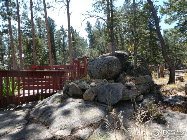 512 Eagle Tree Cir Red Feather Lakes, CO 80545 - MLS #: 862039