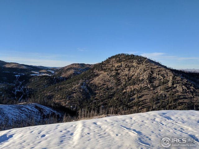 746 Walking Wind Dr Bellvue, CO 80512 - MLS #: 866782