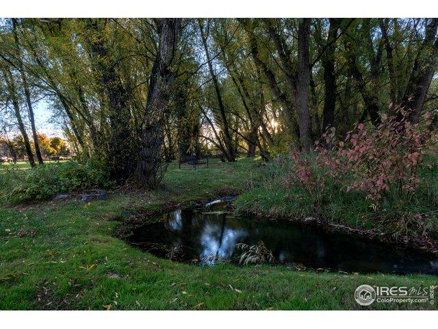 Year-round flowing creek