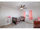 1351 FRONTIER CT, EATON, CO 80615  Photo 20