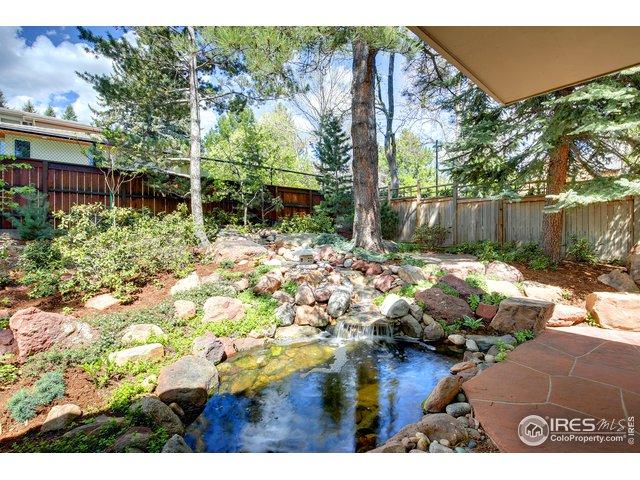 Backyard and Pond