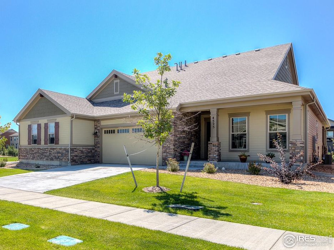 4525 Maxwell Ave, Longmont CO 80503
