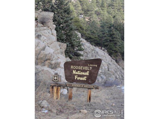 Nat'l Forest Sign