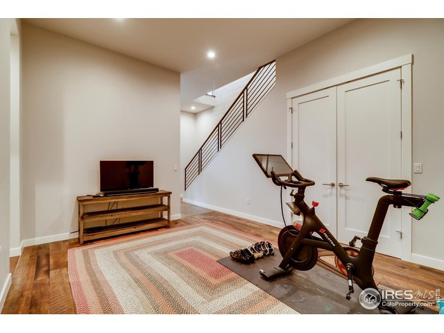 Lower Level Living or Workout Room