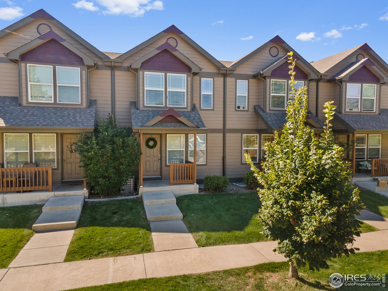 615 Ebon Pica St, Fort Collins CO 80521